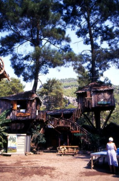 Antalya - Olympos - Tree houses